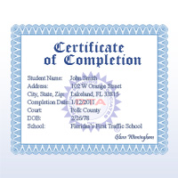 Florida BDI completion certificate
